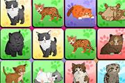 Cat Memory Game